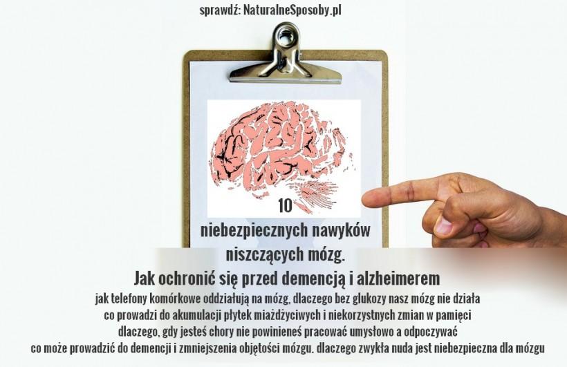 naturalnesposoby.pl-mozg
