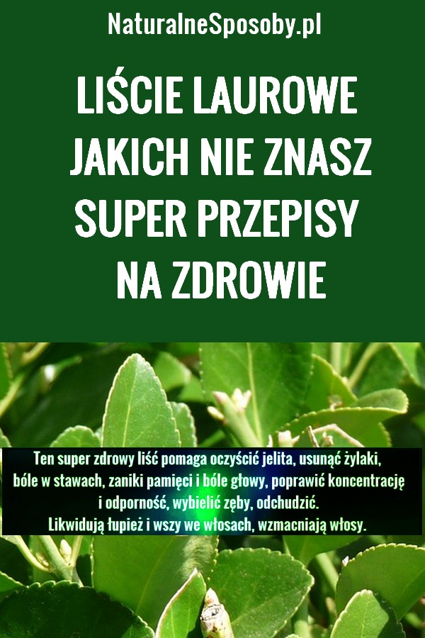 NaturalneSposoby.pl-liscie-laurowe-na-zdrowie